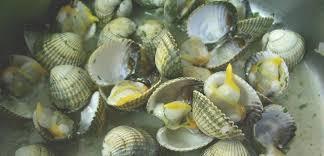 cuisiner les coques laver et ouvrir des coques marinière en images le sot l y laisse
