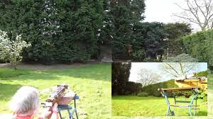 electric automatic bow bench shoot youtube