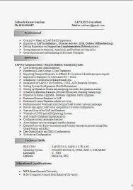 Edi Consultant Resume Sap Fico Resume Sample Resume Templates Bus Driver By Machine