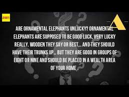 are elephants bad luck or luck