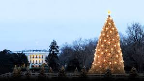 america s best tree lighting ceremonies