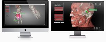 Descargar Home Design 3d Para Pc Gratis Essential Anatomy 3 U2013 3d4medical