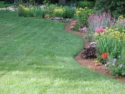 fertilizing flower garden plants center for agriculture food