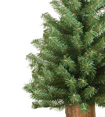 tabletop trees canada 28 images lot of 4 canadian pine 1 foot