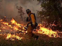 California Wildfire Evacuation Plan by Wildfire Near Yosemite Surges Prompts Evacuations Cbs News