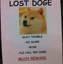 Doge Original Meme - lost doge much reward doge