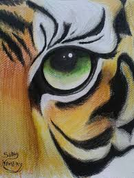 tiger eye the tiger pencil and in color tiger eye the