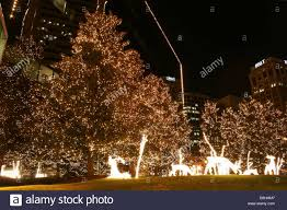 christmas lights richmond va christmas lights decoration