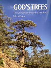 god s trees julian new book about trees forests and wood