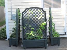 trellis planter garden screen u2013 outdoor decorations