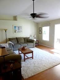 Shag Carpet Area Rugs Interior Family Room With White Sofa And White Shag Rug Design