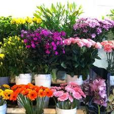 houston flowers usa flowers shop florists 5330 chimney rock rd gulfton houston