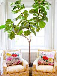indoor tree nature inspired green home interior design