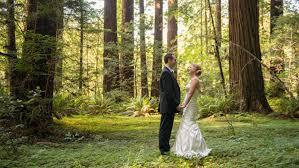 redwood forest wedding venue weddings