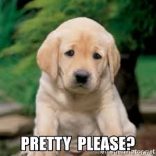 Puppy Eyes Meme - pretty please puppy dog eyes meme generator
