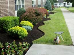 spring landscaping spring clean up anthony s lawn care and landscaping