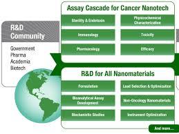 nanotechnology characterization laboratory national cancer institute