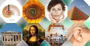 Exles Of Internet Memes - to use the golden ratio in design with exles