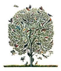 vintage feather print tree of birds