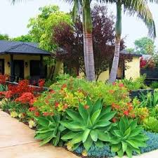 226 best tropical garden 2 images on pinterest landscaping