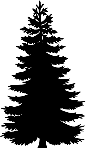 pine trees black and white clipart panda free clipart images