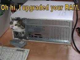 Download More Ram Meme - image 369826 download more ram know your meme