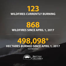 Bc Wildfire Global News by August 4 2017 U2013 Tree Frog Creative