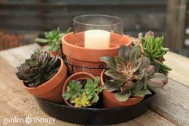 succulent centerpieces make this stunning terra cotta pot succulent centerpiece