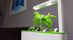 Indoor Vegetable Garden Kit by Indoor Robot Garden Youtube