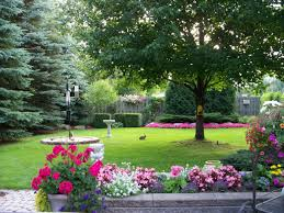 Backyard Trees Landscaping Ideas by Outdoor Backyard Flowers Awesome Landscaping Ideas Backyard