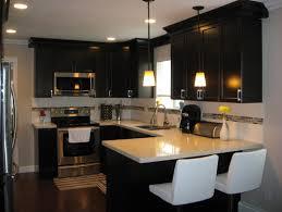 Dark Espresso Kitchen Cabinets by Maple Cabinets In A Dark Espresso Stain An Off White Quartz
