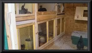 chicken coop rabbit hutch combo that works pics of my design