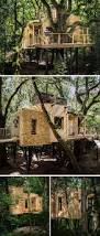 222 best treehouse images on pinterest treehouses treehouse and