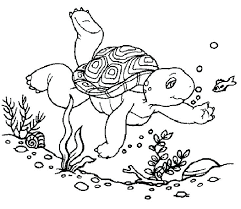 free printable coloring pages turtles coloring pages ideas