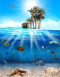 underwater scene wallpaper wall mural wallsauce save your design for later