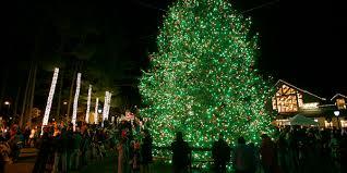 l l bean northern lights celebration christmas tree lighting