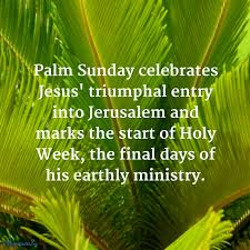 palm branches for palm sunday palm sunday austria today s the free