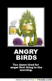 Angry Birds Memes - angry bird meme generator bird best of the funny meme