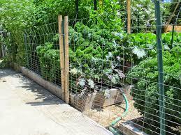 easy garden fence ideas wonderful inspiration easy garden fence plain decoration 78 ideas