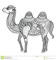 dromedary camel coloring pages duck ducks printable kids