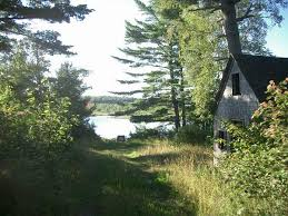 Eels Lake Cottage Rental by Canada New Brunswick Real Estate First Eel Lake Eel River