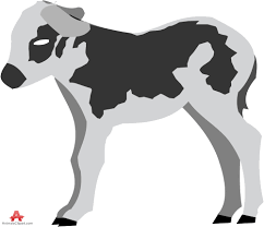 animals clipart of cow clipart with the keywords cow