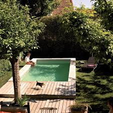 small yard pool cimg2014 1000x750 pools for small yards pool w sheer descent home