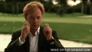 Horatio Caine Memes - horatio caine gif 6 gif images download