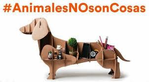 imagenes de animales y cosas animales no son cosas una caña para cambiar el código civil