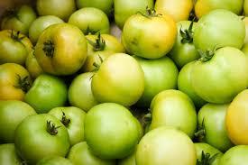 comment cuisiner les tomates vertes les tomates vertes en cuisine tout savoir sur les fruits la