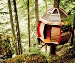 forest house interior design ideas