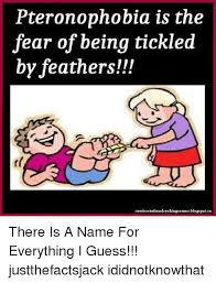 Tickled Memes - pteronophobia is the fear of being tickled by feathers