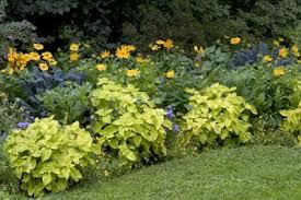 landscape ideas that reduce grass lovetoknow