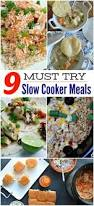 Main Dish Crock Pot Recipes - 717 best main dish recipes images on pinterest recipes chinese